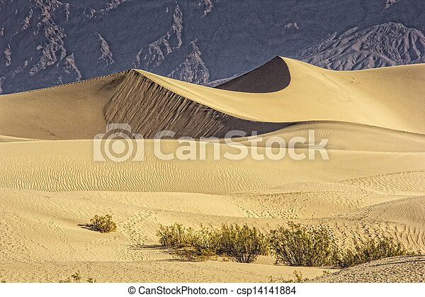 Sand Dunes in the Morning - csp14141884