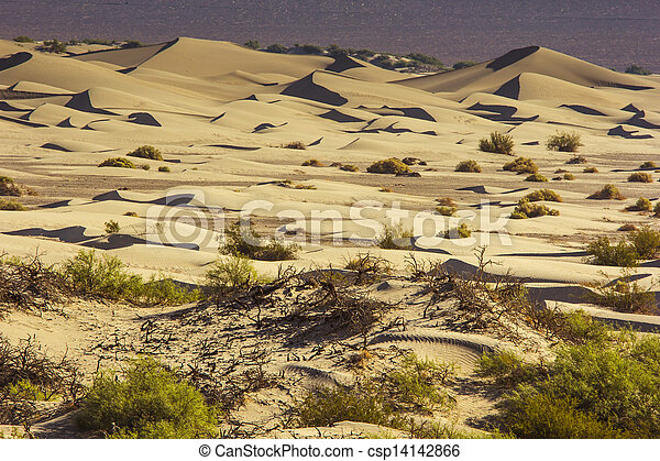 Sand Dunes in the Morning - csp14142866