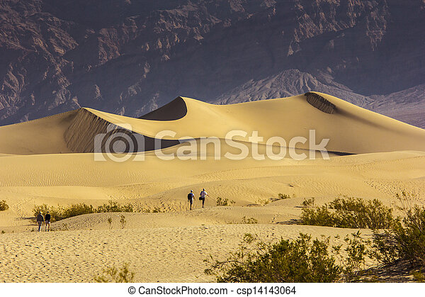 Sand Dunes in the Morning - csp14143064