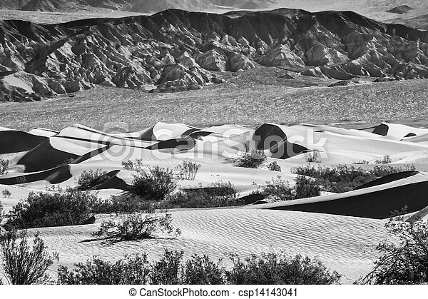 Sand Dunes in the Morning - csp14143041