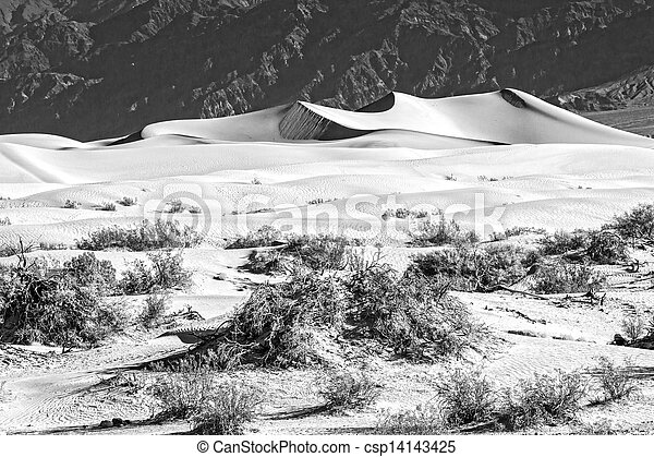Sand Dunes in the Morning - csp14143425