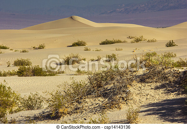 Sand Dunes in the Morning - csp14143136