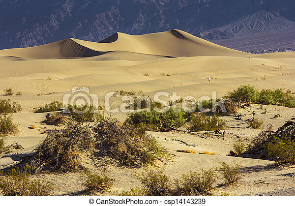 Sand Dunes in the Morning - csp14143239