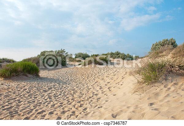 Sand dunes near the coast of the Black Sea near Anapa, Russia - csp7346787
