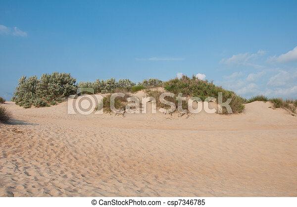 Sand dunes near the coast of the Black Sea near Anapa, Russia - csp7346785
