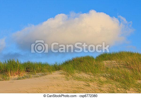 Sand dunes with helmet grass - csp6772380