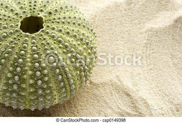 sand see, bengel - csp0149398
