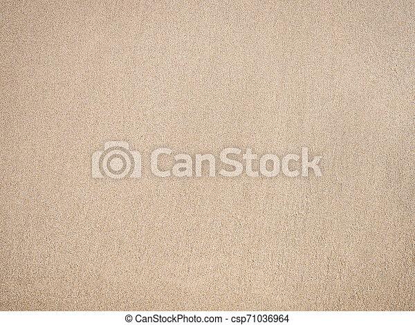 Sand Texture For Summer Background Sand Texture Beige Color For Summer Beach Background,Safflower Seeds Vs Sunflower Seeds