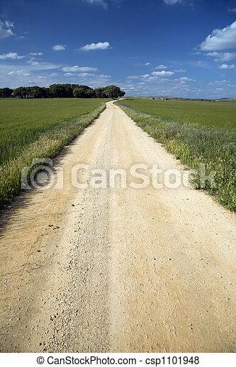 sand track - csp1101948