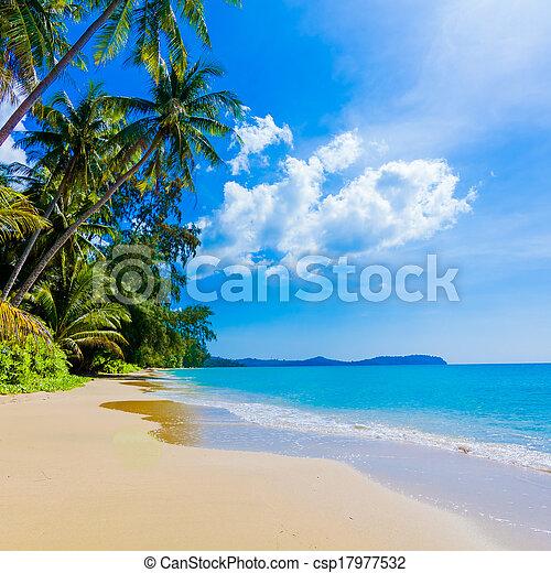 sandstrand, meer, schöne , tropische  - csp17977532