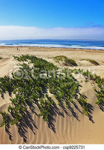 sandstrand, pazifik - csp9225731