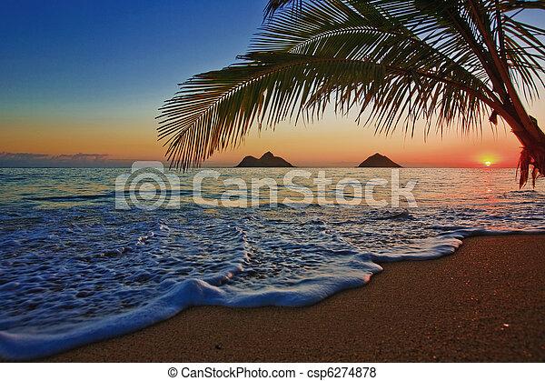 sandstrand, sonnenaufgang, lanikai, hawaii, pazifik - csp6274878