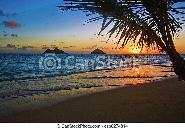 Pacific Sonnenaufgang am Lanikai Beach, hawaii - csp6274814