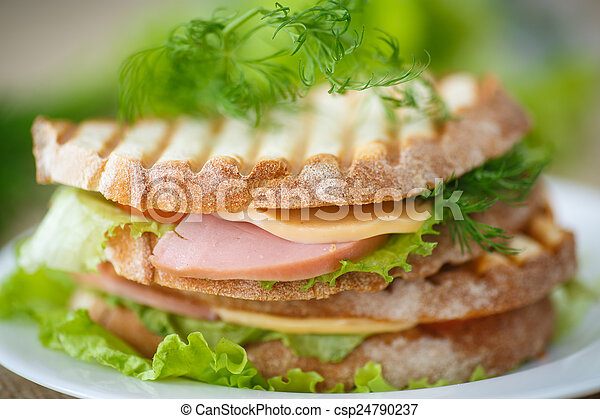 sandwich with sausage, cheese and herbs - csp24790237