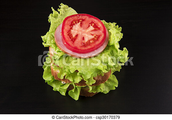 sandwich with tomato cheese and ham - csp30170379