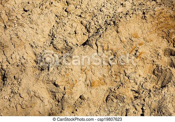 Sandy background - csp19807623