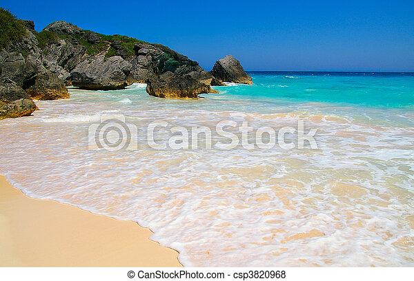 Sandy beach and rocky coastline with blue ocean water (Bermuda) - csp3820968