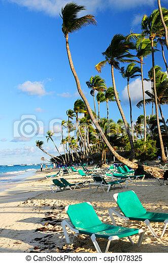 Sandy beach of tropical resort - csp1078325