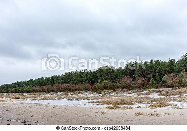 sandy shore of the sea - csp42638484