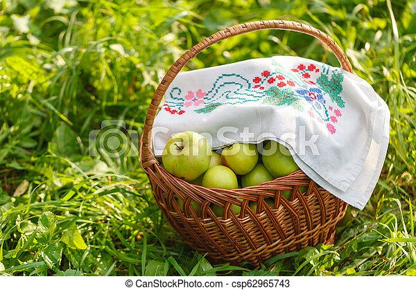 Manzanas orgánicas saludables en la canasta. - csp62965743