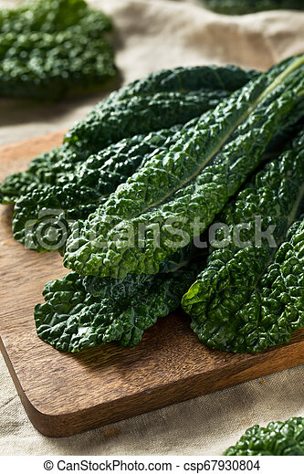 Lacinato col rizada orgánica saludable - csp67930804