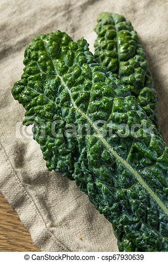 Lacinato col rizada orgánica saludable - csp67930639