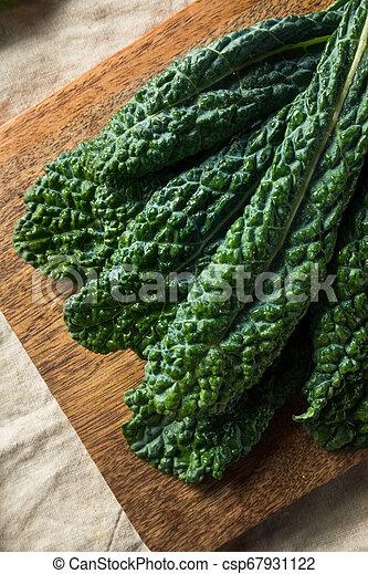 Lacinato col rizada orgánica saludable - csp67931122