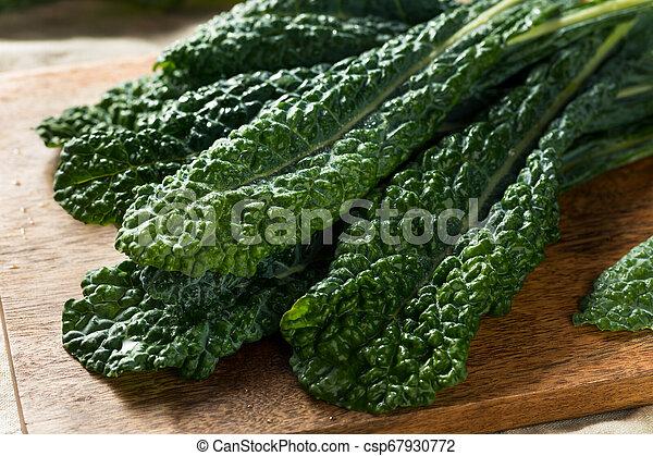 Lacinato col rizada orgánica saludable - csp67930772