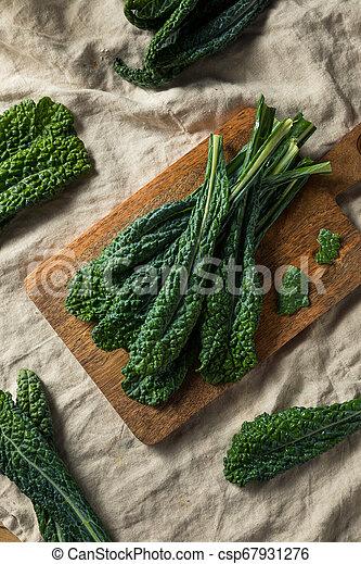 Lacinato col rizada orgánica saludable - csp67931276