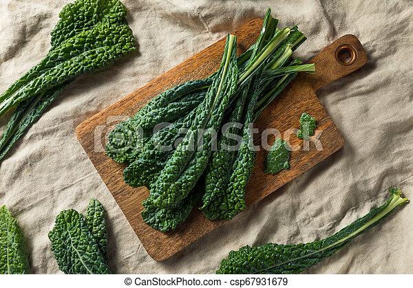 Lacinato col rizada orgánica saludable - csp67931679