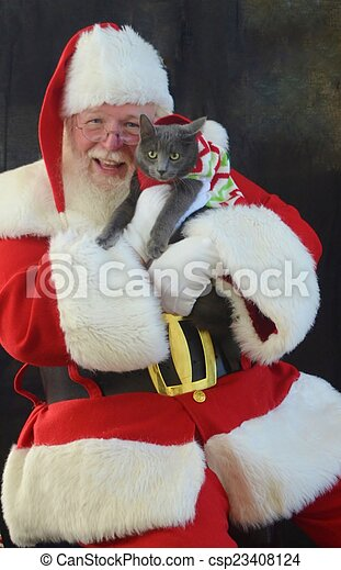 Kitten Christmas Sweater.Santa Claus Holding A Kitten Santa Holds A Gray Kitten In A