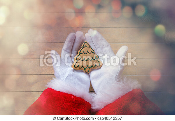 Santa Claus holding Chrstmas cookie - csp48512357