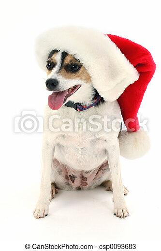 Santa Dog Hat - csp0093683