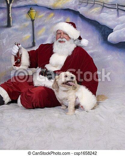 Santa Puppy - csp1658242