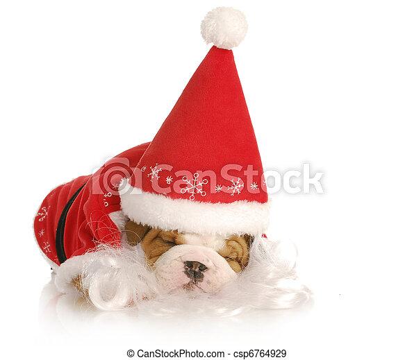 santa puppy - csp6764929