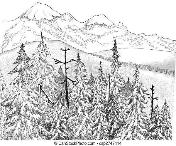 Sapin Foret Sapin Montagnes Dessin Foret Pen And Ink Canstock