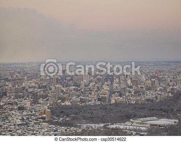 Sapporo city in winter. - csp30514622