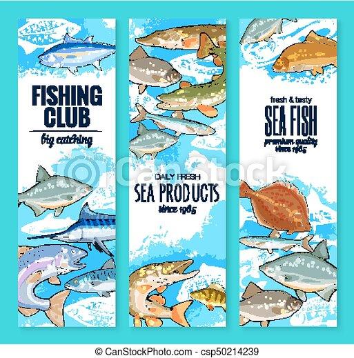 satz, klub, fische, vektor, fischen fängt, banner