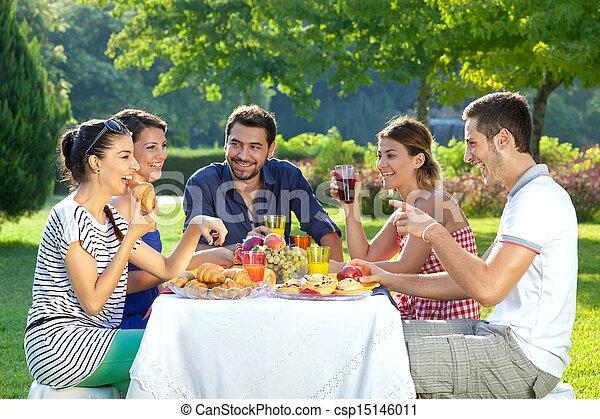 saudável, desfrutando, ao ar livre, amigos, refeição - csp15146011