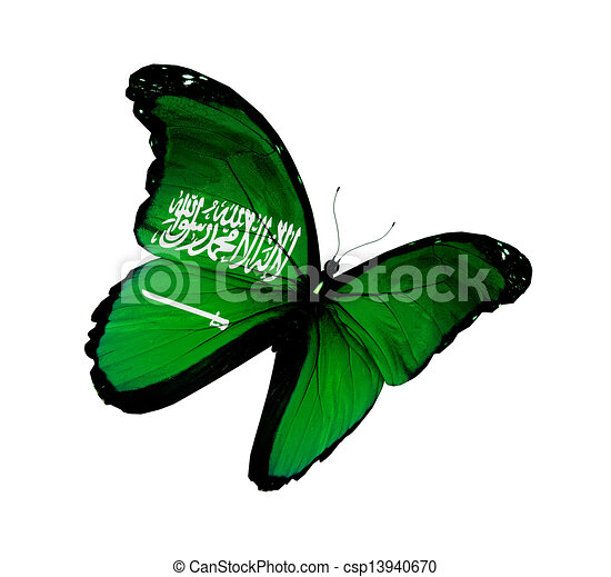 Saudi Arabia flag butterfly flying, isolated on white background - csp13940670