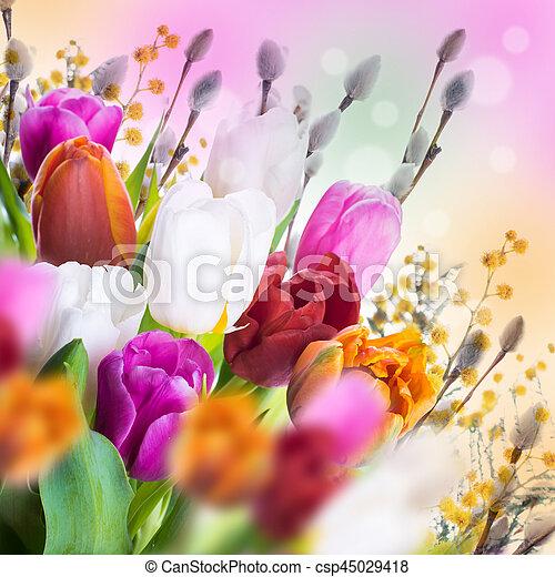 saule, tulipes, butterflies., multi-coloré - csp45029418