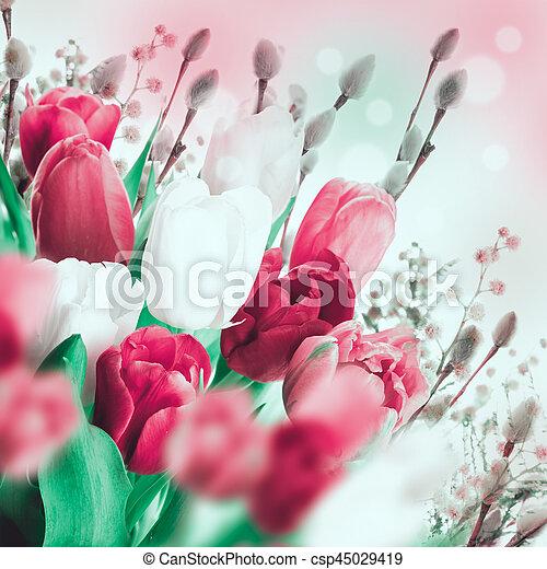 saule, tulipes, butterflies., multi-coloré - csp45029419