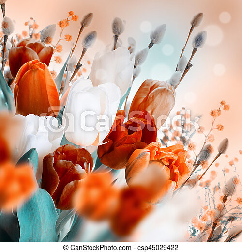 saule, tulipes, butterflies., multi-coloré - csp45029422