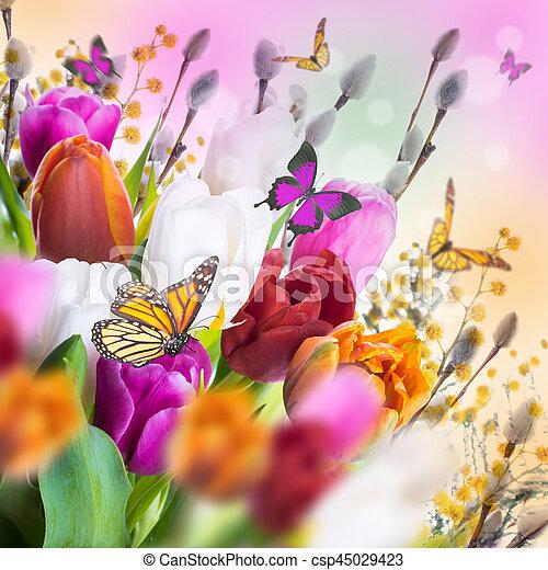 saule, tulipes, butterflies., multi-coloré - csp45029423