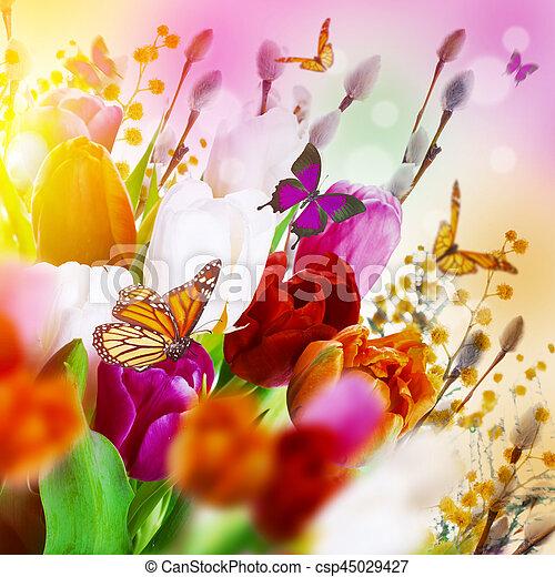 saule, tulipes, butterflies., multi-coloré - csp45029427