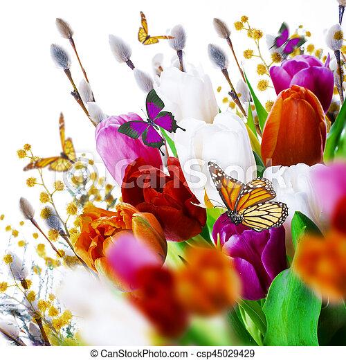 saule, tulipes, butterflies., multi-coloré - csp45029429