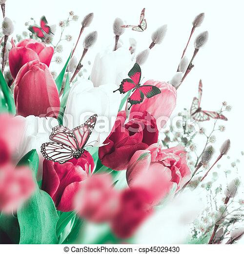 saule, tulipes, butterflies., multi-coloré - csp45029430