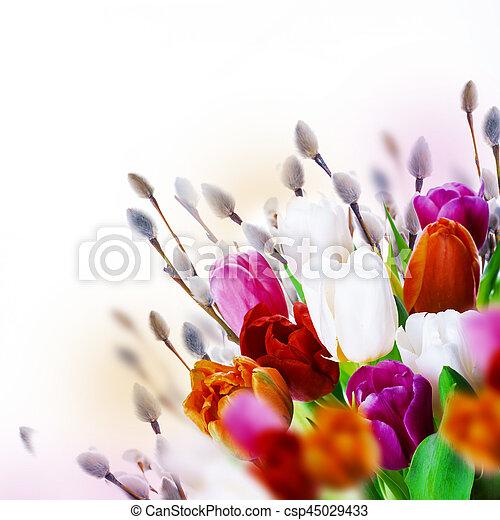 saule, tulipes, butterflies., multi-coloré - csp45029433