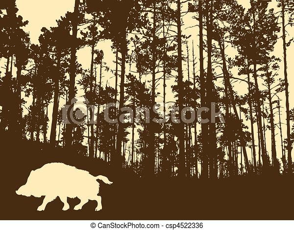 sauvage, bois, verrat, épais, silhouette - csp4522336