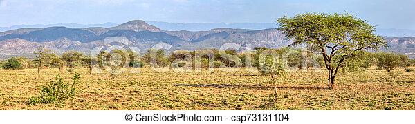savanna in the Awash National Park, Ethiopia - csp73131104